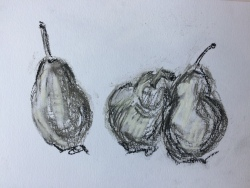 pears in ink